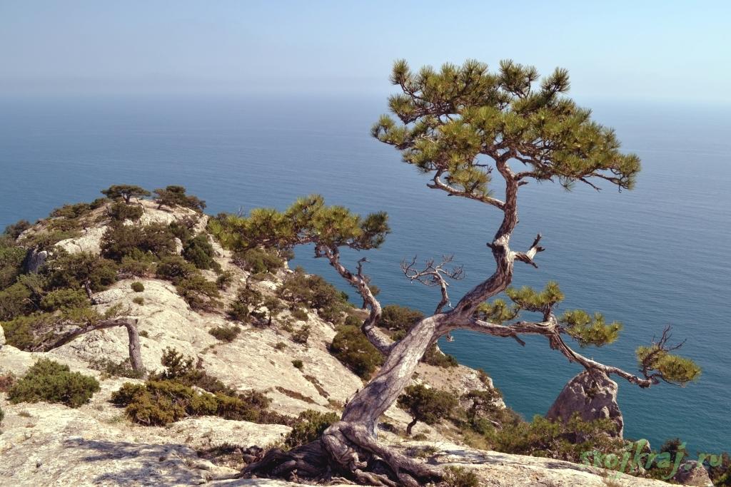На краю счастья. Вид на море с заповедника Караул-Оба