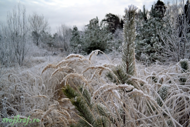 Миф всемогущества или кто отвечает за погоду