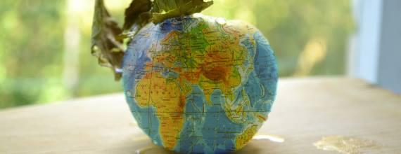 Яблоко мира. глобус. коллаж