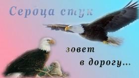 Коллаж Два орла Движение к цели. Мой путь сердца