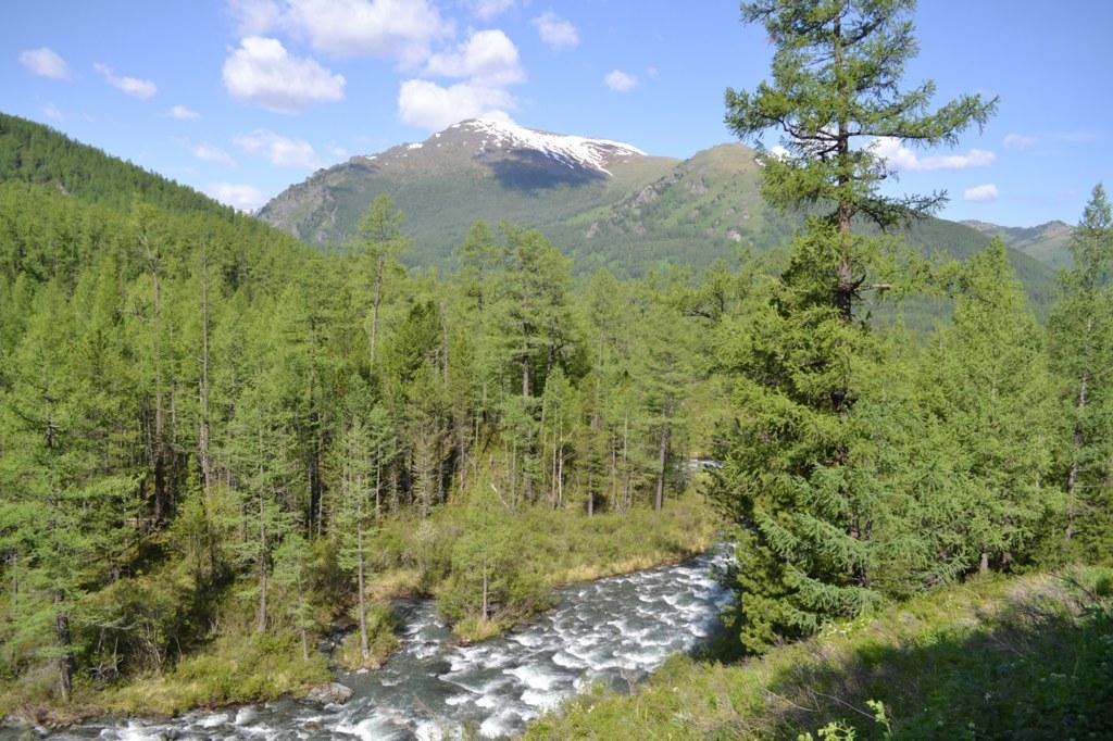 Алтай. Река и горы