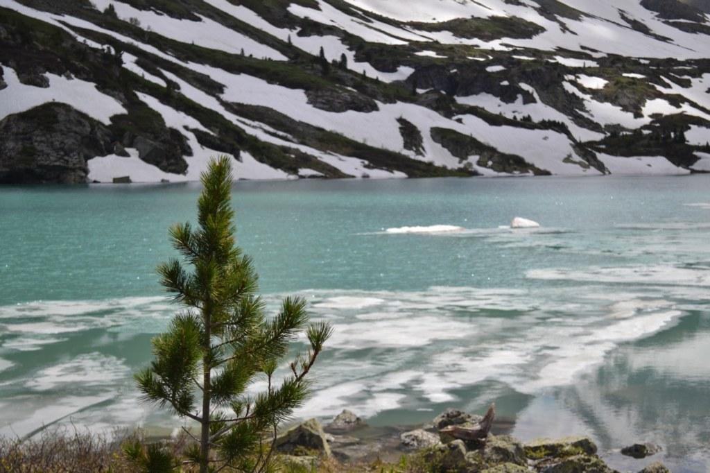 Алтай. Озеро Куйгук