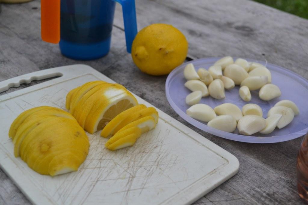 Походные витамины. Лимон и чеснок