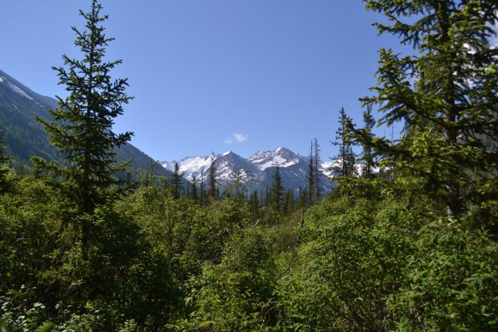 Алтай. Красивый вид на горы
