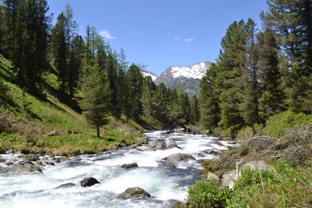 Алтай. Река Мульта