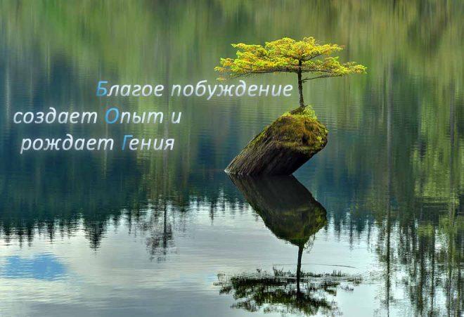 Размышления о Божественном Творце